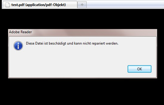 Adobe-Fehlermeldung